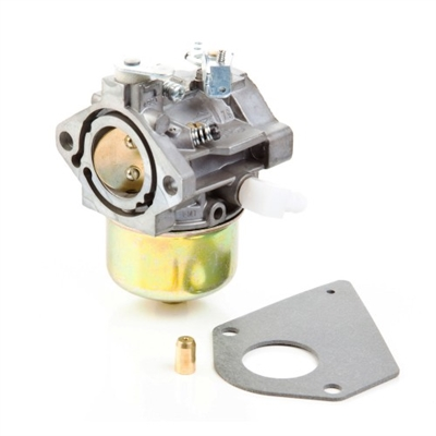 Briggs & Stratton Carburetor (495784)