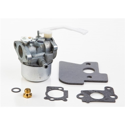 Briggs & Stratton Carburetor (694203)