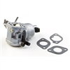 Briggs & Stratton Carburetor (699807)