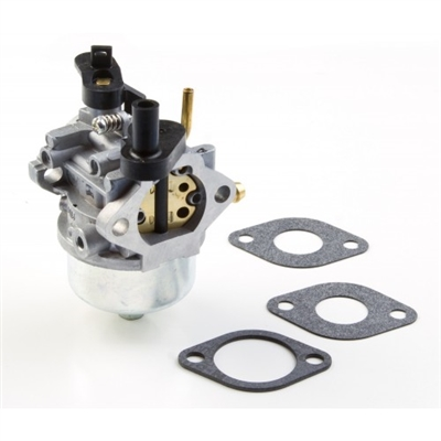 Briggs & Stratton Carburetor (801396)